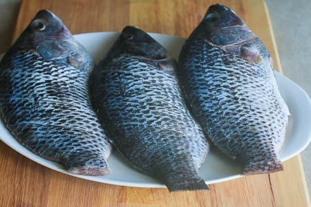 Grill tilapia