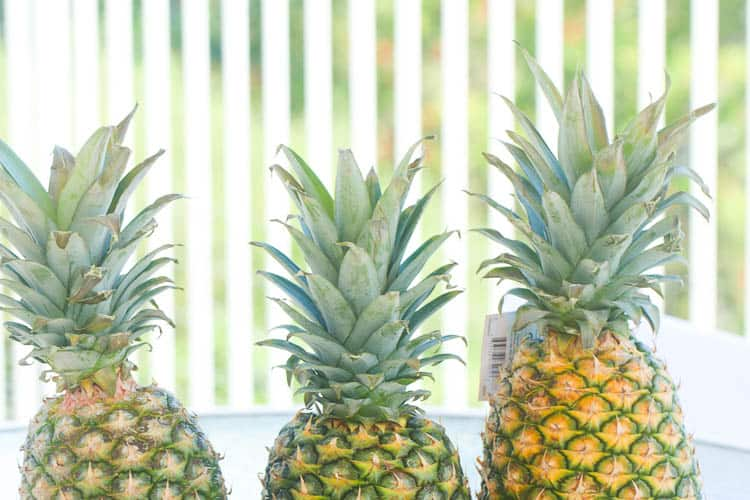 Picking Pineapple