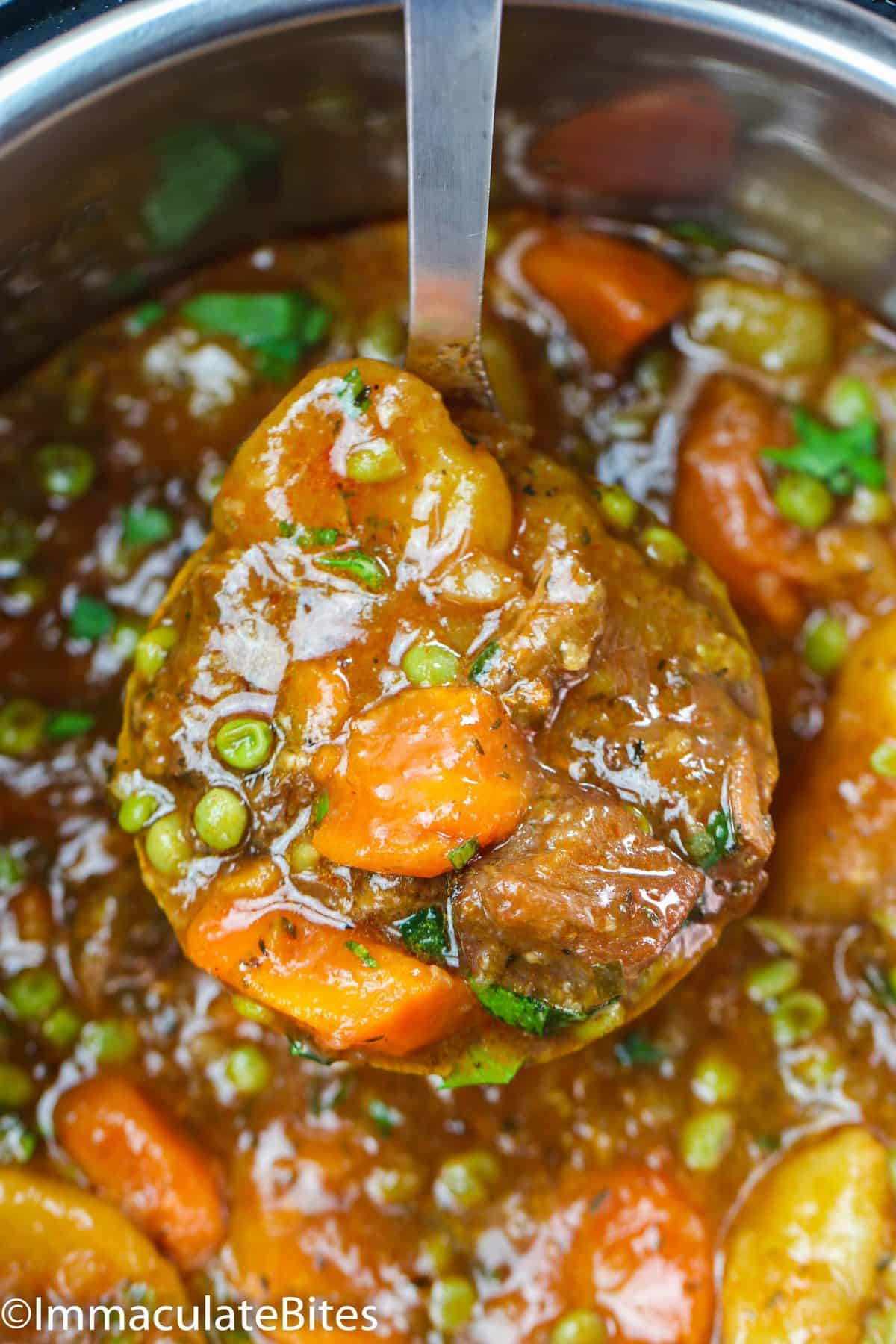 A Laddle of Instant Pot Beef Stew