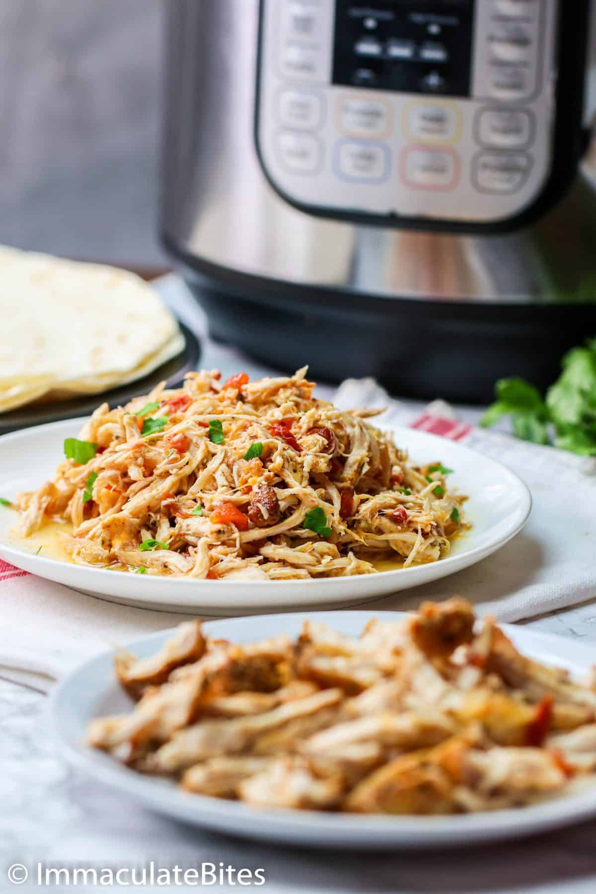 Instant Pot Shredded Chicken on a Plate
