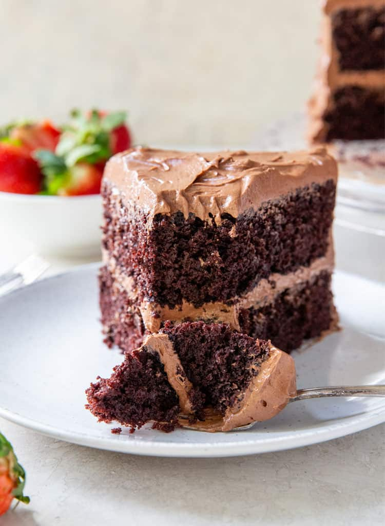 A Slice of Devil's Food Cake
