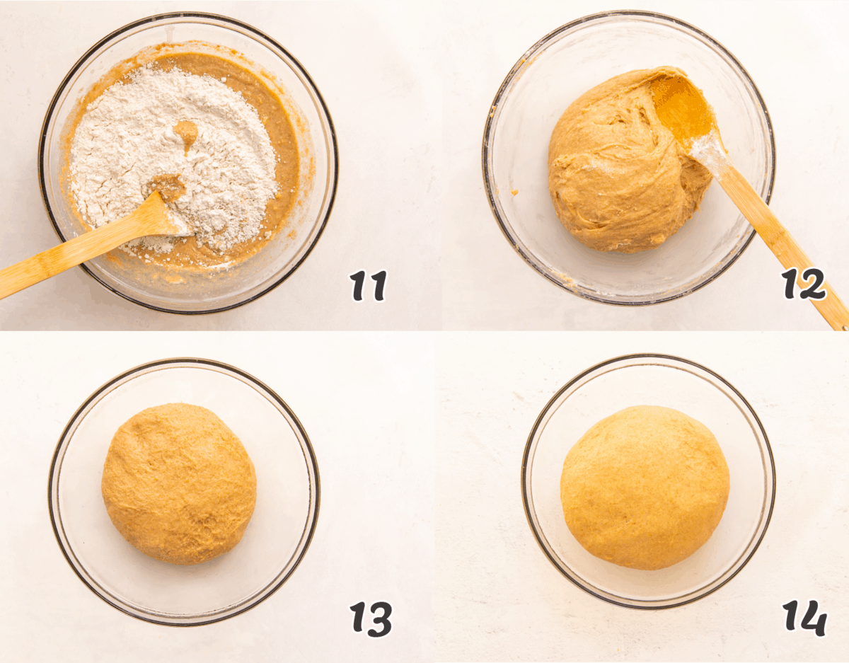 How to Make Honey Wheat Roll