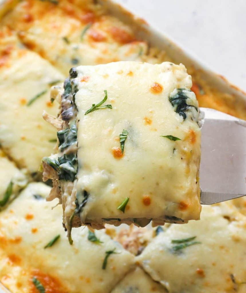 Chicken Lasagna on spatula