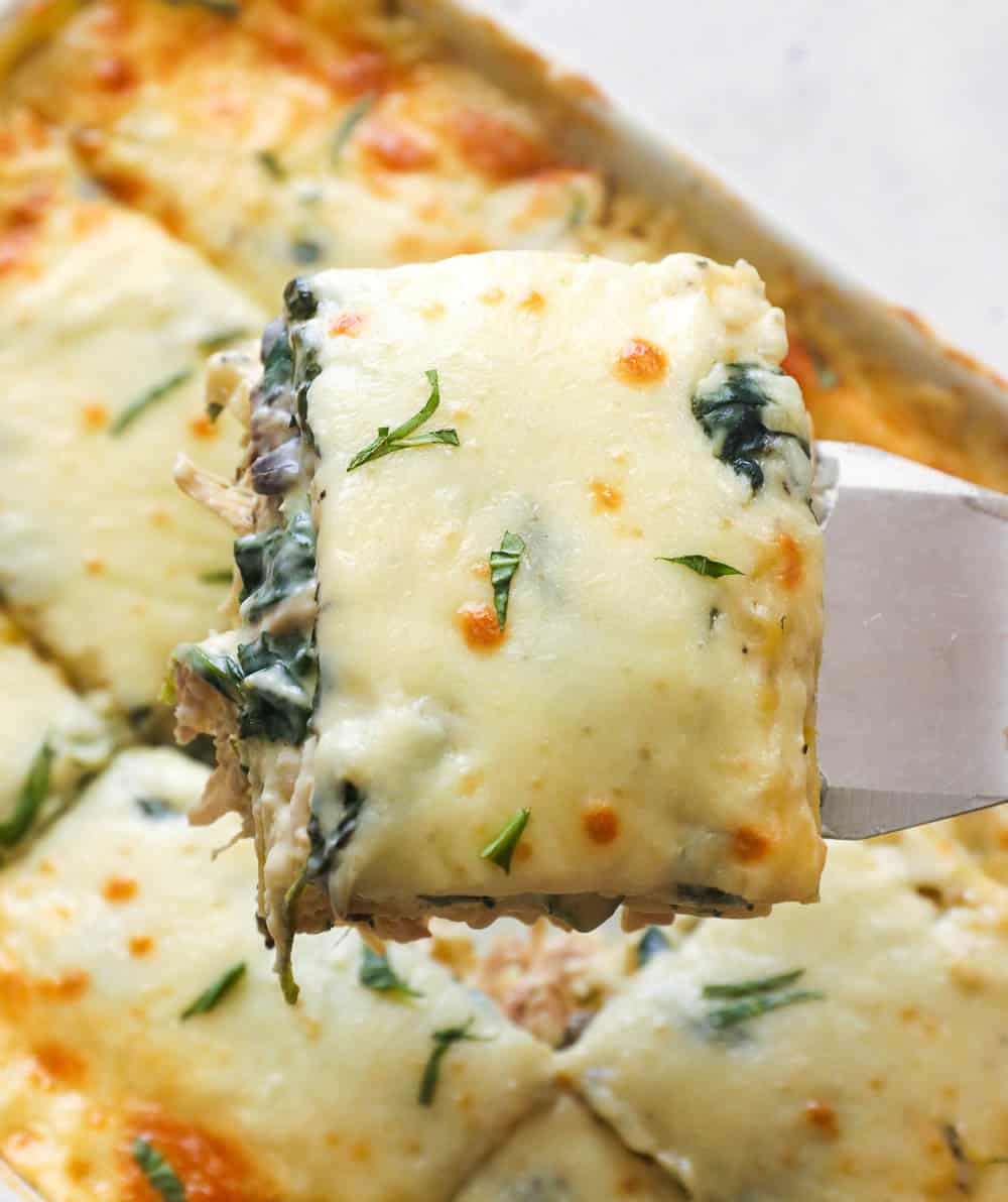 Creamy and cheese chicken lasagna
