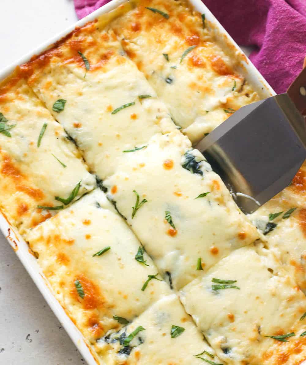 Delicious chicken lasagna