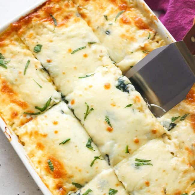 Chicken Lasagna ready to serve